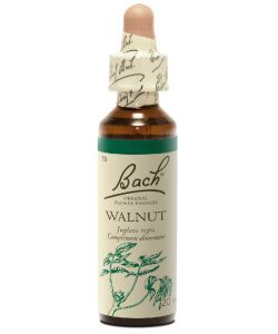 Noyer - Walnut (n°33), 20 ml