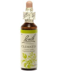 Clématite - Clematis (n°9), 20ml