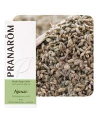 Ajowan (Trachyspermum ammi) - Huile essentielle
