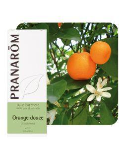 Orange douce (Citrus sinensis) - Huile essentielle