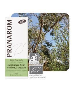 Eucalyptus à fl. multiples (Euc. polybract.) BIO, 10ml