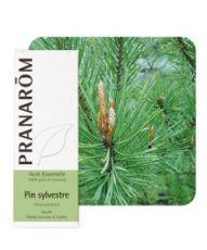 Pin sylvestre (Pinus Sylvestris)