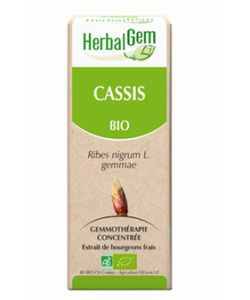 Cassis (Ribes nigrum) bourgeon BIO, 50 ml