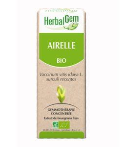 Airelle (Vaccinium V.I.) bourgeon BIO, 15ml