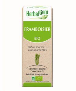 Framboisier (Rubus idaeus) bourgeon BIO, 15ml