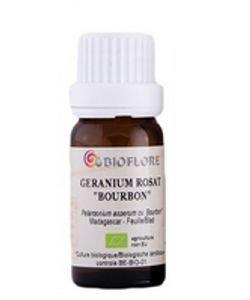 Géranium Rosat 'bourbon'(Pelargonium asperum)BIO