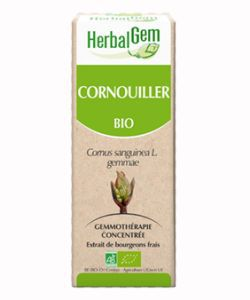 Cornouiller (Cornus sanguinea gemmae) bourgeon BIO, 15 ml