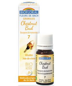 Bourg. de Marronnier - Chestnut Bud (n°7), granules sans alcool BIO, 10ml