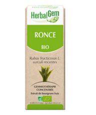 Ronce (Rubus fructicosus) j.p.