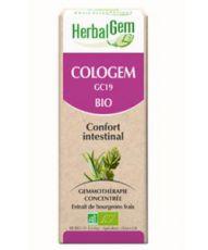 Cologem - Confort Intestinal
