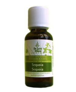 Séquoia (Sequoia gigantea) bourgeon BIO, 30 ml
