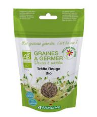 Seeds germinate - Red Clover