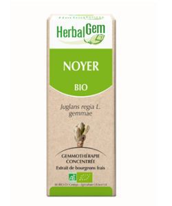 Noyer (Juglans regia) bourgeon BIO, 15ml