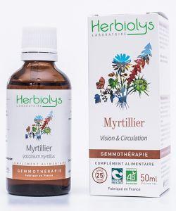 Myrtillier (Vaccinum myrtillus) - bourgeons frais BIO, 50ml