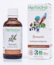 Romarin (Rosmarinus officinalis) - bourgeons frais