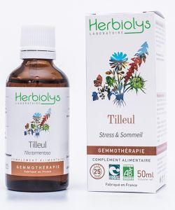 Tilleul argenté (Tilia tomentosa) - bourgeons frais BIO, 50ml