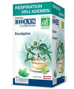 Infusion eucalyptus (Respiration) BIO, 20sachets