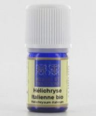 Helichryse italienne - Immortelle (Helichrysum italicum)
