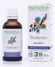Complexe Tendinolys