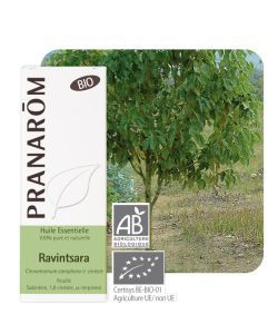Ravintsara (Cinnamomum camphora ct cinéole) BIO, 10ml