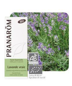 Lavande vraie (Lavandula angustifolia) BIO, 10ml
