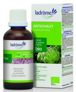 Artichaut - extrait de plante fraîche BIO, 50ml