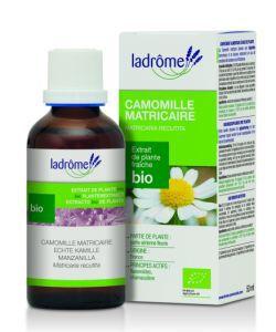Camomille matricaire - extrait de plante fraîche BIO, 50ml
