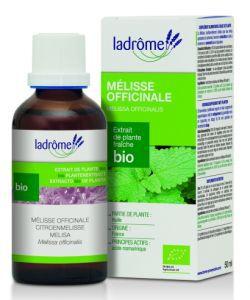 Mélisse officinale - extrait de plante fraîche BIO, 50ml