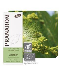 Giroflier (Eugenia caryophyllus) BIO, 10ml