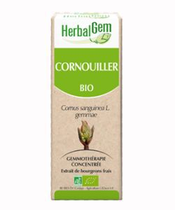 Cornouiller (Cornus sanguinea gemmae) bourgeon BIO, 50 ml