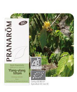 Ylang-ylang totum (Cananga odorata) BIO, 5ml