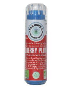 Prunus - Cherry plum (n°6) SANS ALCOOL BIO, 130granules