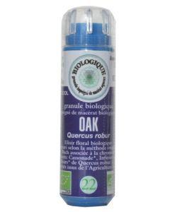 Chêne - Oak (n°22) SANS ALCOOL BIO, 130granules