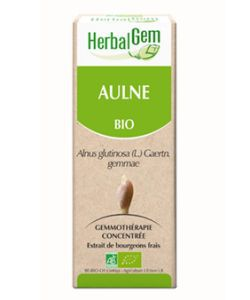 Aulne (Alnus glutinosa) bourgeon BIO, 15 ml