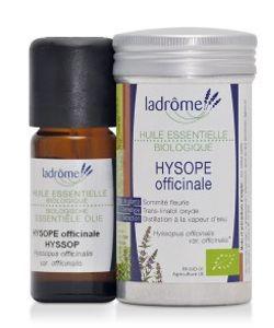 Hysope officinale (Hyssopus officinalis) BIO, 10ml
