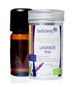 Lavande fine huile essentielle (Lavandula angustifolia)