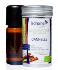 Cannelle (Cinnamonum zeylanicum)