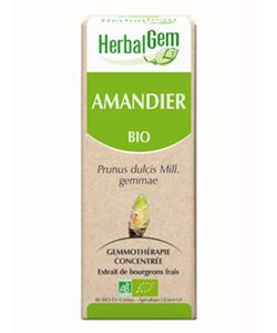 Amandier (Prunus amygdalus) bourgeon BIO, 15 ml