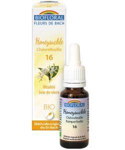 Chèvrefeuille - Honeysuckle (n°16) BIO, 20ml