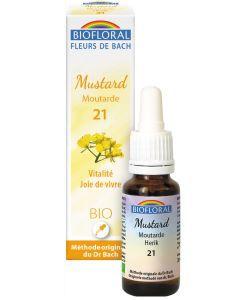 Moutarde - Mustard (n°21)