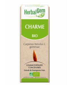 Charme (Carpinus betulus) bourgeon BIO, 50ml