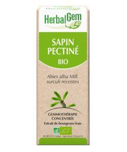 Sapin pectiné (Abies pectinata) j. p. BIO, 50ml