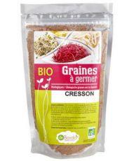 Graines à germer - Cresson