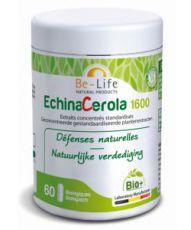 EchinaCerola 1600