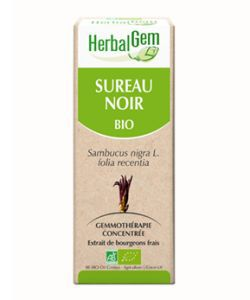 Sureau noir (Sambucus Nigra) bourgeon BIO, 50ml