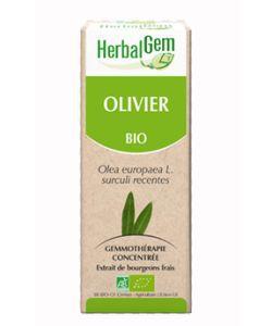 Olivier (Olea europea) j.p. BIO, 15ml