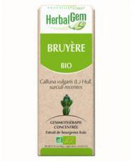 Bruyère (Calluna vulgaris surc. rec.) j.p.