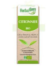 Citronnier (Citrus limonum) écorce