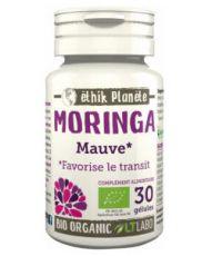 Moringa - Mauve (Transit)