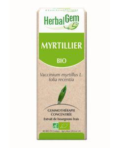 Myrtillier (Vaccinium Myrtillus) j.p. BIO, 50ml